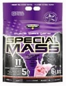 Special Mass 6 lbs (2.7 kg)